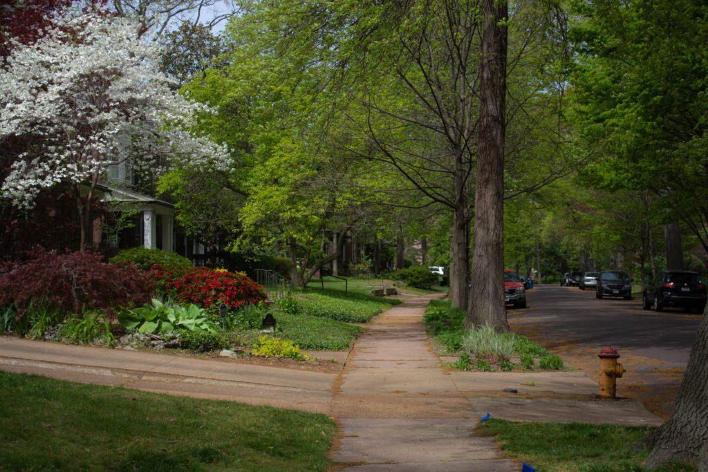 Spring walk through a sunny neighborhood